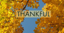 Thankful- Doctor Matt Brady