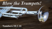 Blow the Trumpets!- Doctor Matt Brady